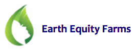 Earth Equity Logo