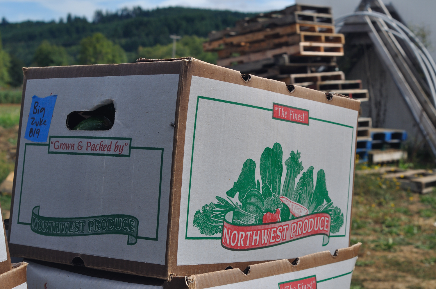 northwest produce box